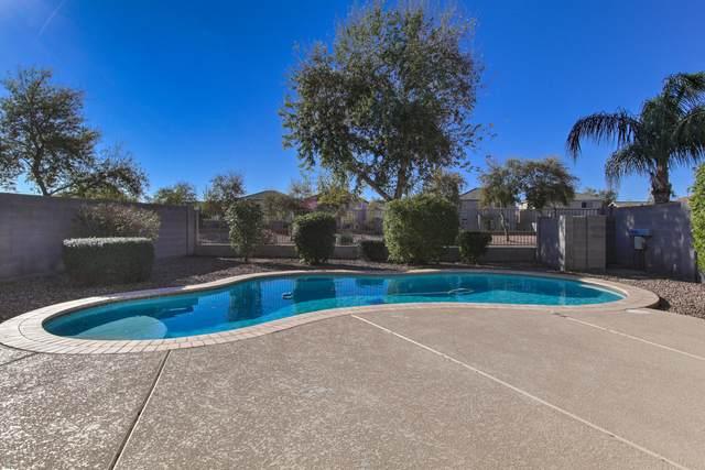 4771 E Meadow Land Drive, San Tan Valley, AZ 85140 (MLS #6043247) :: Revelation Real Estate