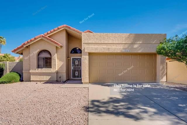 11855 N 112TH Way, Scottsdale, AZ 85259 (MLS #6043249) :: The Kenny Klaus Team