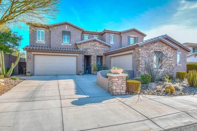 29935 N 122ND Drive, Peoria, AZ 85383 (MLS #6043253) :: Revelation Real Estate