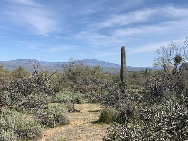 29500 N 162nd Street, Scottsdale, AZ 85262 (MLS #6043269) :: REMAX Professionals