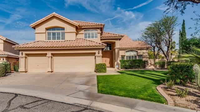 1602 E Saltsage Drive, Phoenix, AZ 85048 (MLS #6043283) :: The Kenny Klaus Team