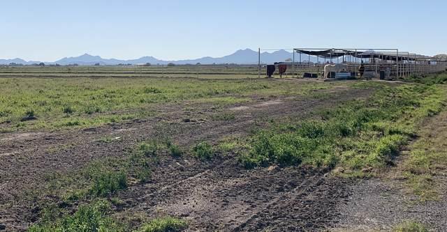 14557 N Luckett Road, Marana, AZ 85653 (MLS #6043297) :: Dave Fernandez Team | HomeSmart