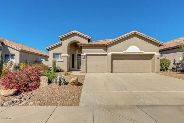 4236 E Molly Lane, Cave Creek, AZ 85331 (MLS #6043305) :: The Property Partners at eXp Realty