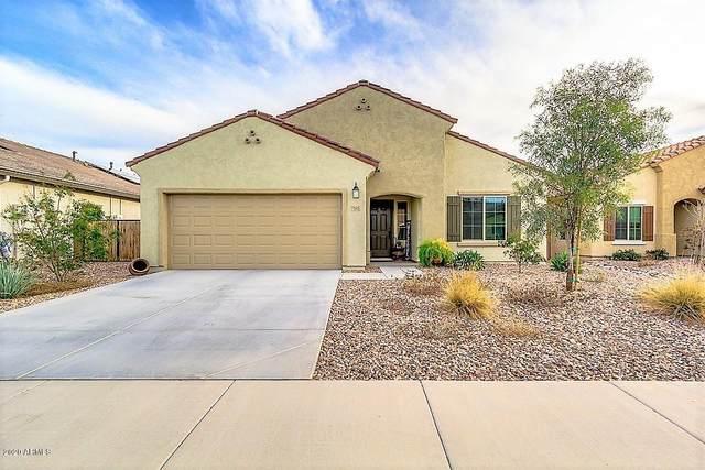 7045 W Sonoma Way, Florence, AZ 85132 (MLS #6043376) :: Keller Williams Realty Phoenix