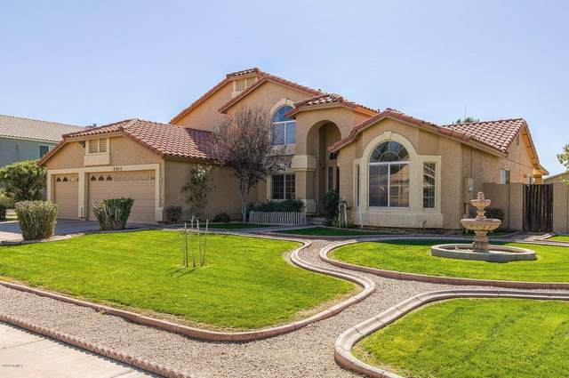 2455 E Libra Street, Gilbert, AZ 85234 (MLS #6043407) :: Revelation Real Estate