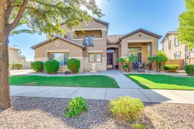 20784 S 186TH Place, Queen Creek, AZ 85142 (MLS #6043409) :: The Kenny Klaus Team