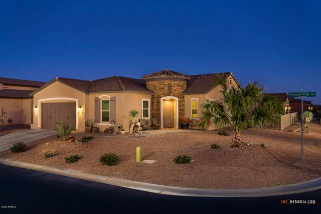 20101 N Peppermint Drive, Maricopa, AZ 85138 (MLS #6043414) :: Revelation Real Estate