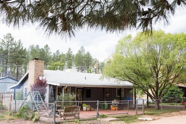 255 W Thompson Road, Payson, AZ 85541 (MLS #6043416) :: Revelation Real Estate