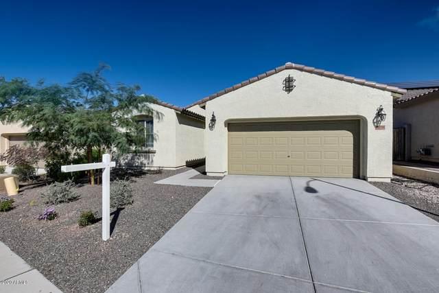 10726 W Brooklite Road, Peoria, AZ 85383 (MLS #6043426) :: The Kenny Klaus Team