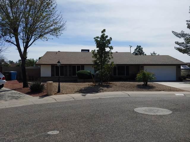 4533 E Kings Avenue, Phoenix, AZ 85032 (MLS #6043452) :: The Kenny Klaus Team