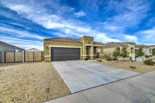11500 E Cliffrose Lane, Florence, AZ 85132 (MLS #6043464) :: Revelation Real Estate