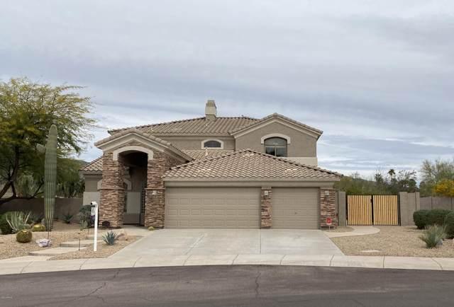 1538 W Glenhaven Drive, Phoenix, AZ 85045 (MLS #6043489) :: The Kenny Klaus Team