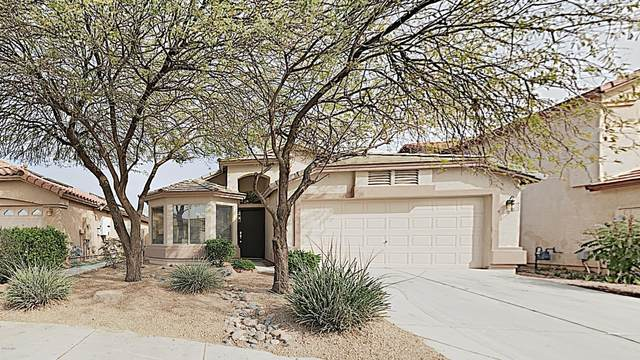 21381 N Falcon Lane, Maricopa, AZ 85138 (MLS #6043494) :: The Everest Team at eXp Realty