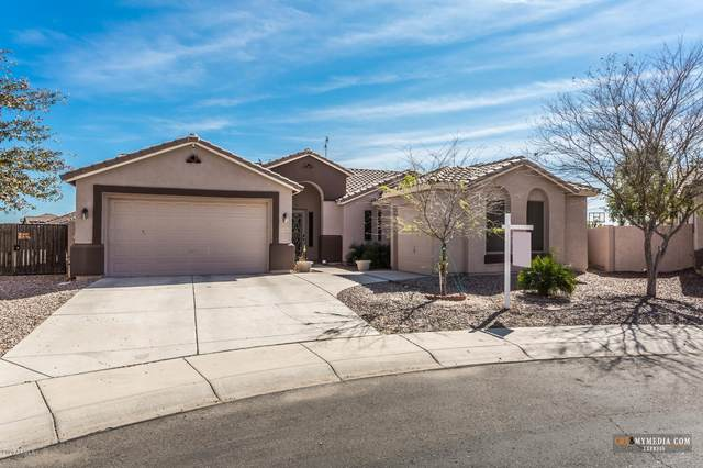18315 N Falcon Lane, Maricopa, AZ 85138 (MLS #6043531) :: Revelation Real Estate
