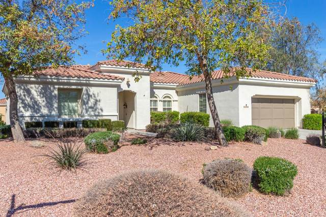 23008 N Pico Court, Sun City West, AZ 85375 (MLS #6043534) :: Long Realty West Valley