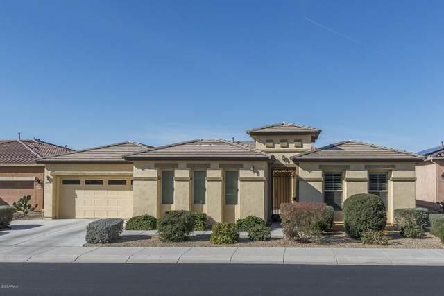 16990 S 174TH Drive, Goodyear, AZ 85338 (MLS #6043611) :: REMAX Professionals