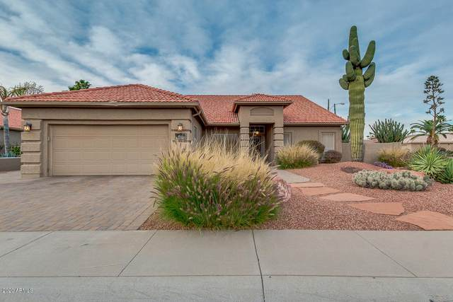 432 W Teakwood Drive, Chandler, AZ 85248 (MLS #6043627) :: REMAX Professionals