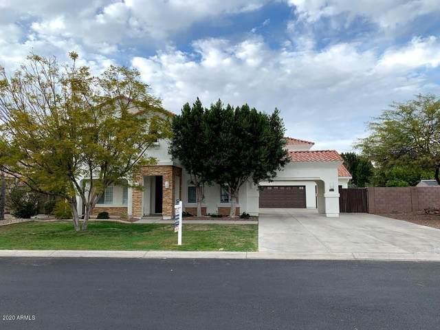 7184 W Cielo Grande Avenue, Peoria, AZ 85383 (MLS #6043633) :: The Kenny Klaus Team