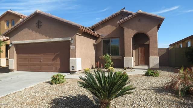 43954 W Palo Cedro Road, Maricopa, AZ 85138 (MLS #6043637) :: Revelation Real Estate