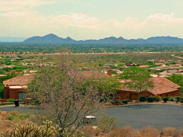 12949 N 119TH Street, Scottsdale, AZ 85259 (MLS #6043655) :: Arizona Home Group