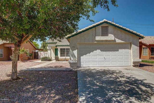 256 S Springs Drive, Chandler, AZ 85225 (MLS #6043691) :: Brett Tanner Home Selling Team