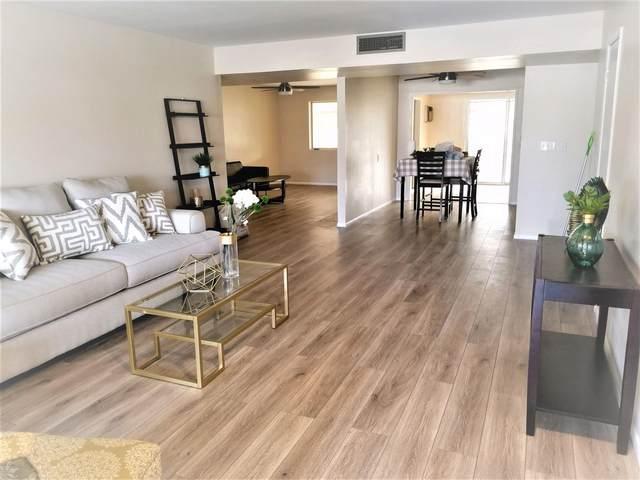10629 W El Capitan Circle, Sun City, AZ 85351 (MLS #6043721) :: Revelation Real Estate
