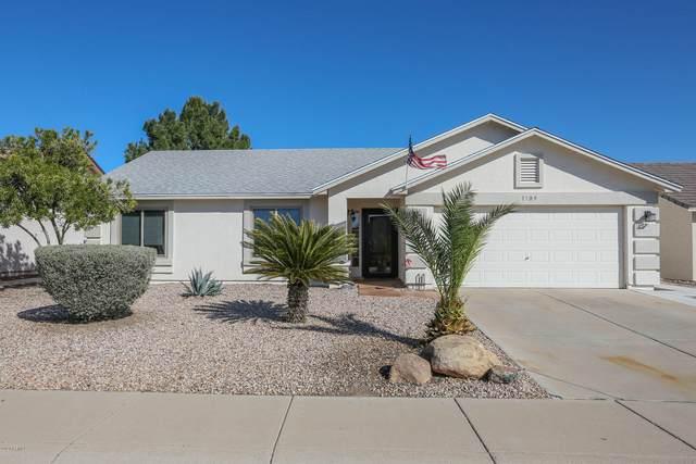 1709 S Rennick Drive S, Apache Junction, AZ 85120 (MLS #6043739) :: Revelation Real Estate