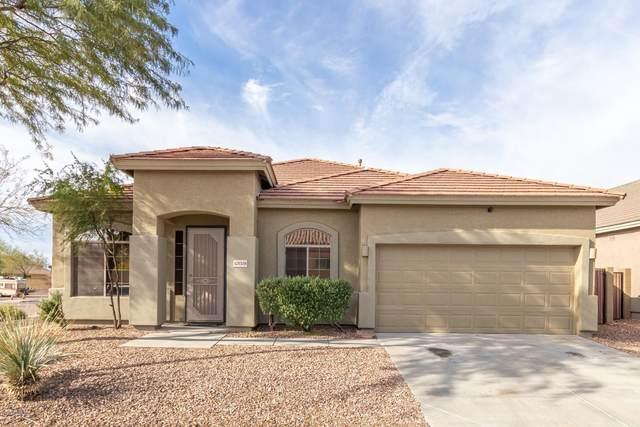42028 N 44TH Drive, Phoenix, AZ 85086 (MLS #6043830) :: Lucido Agency