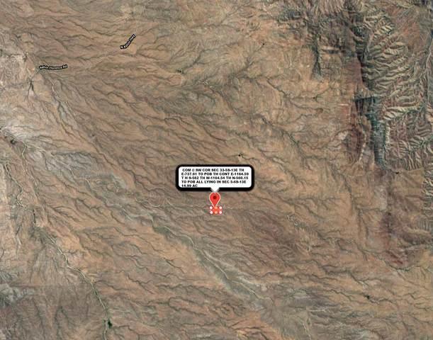 0 E Bartlett Road, Dudleyville, AZ 85192 (MLS #6043881) :: The Bill and Cindy Flowers Team