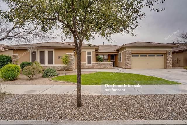 18557 E Pine Barrens Avenue, Queen Creek, AZ 85142 (MLS #6043958) :: Revelation Real Estate