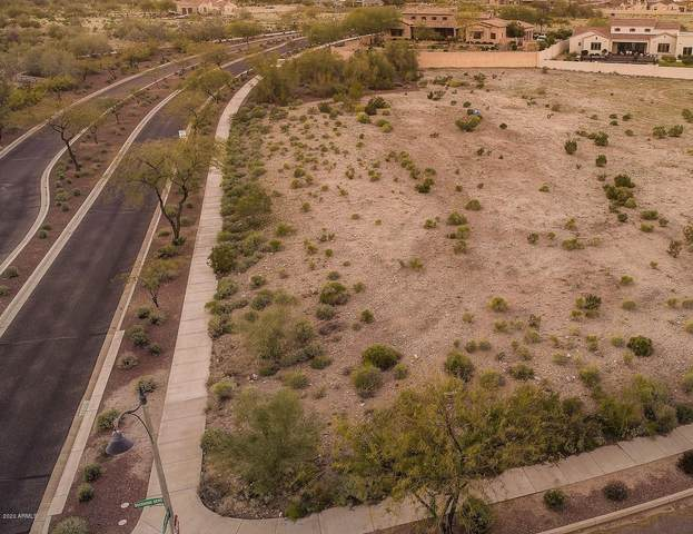 21529 W Buckhorn Bend, Buckeye, AZ 85396 (MLS #6043986) :: Conway Real Estate