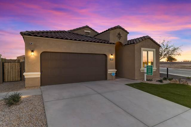 31056 W Mitchell Drive, Buckeye, AZ 85396 (MLS #6044046) :: Conway Real Estate