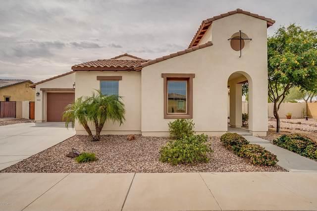 16227 W Holly Street, Goodyear, AZ 85395 (MLS #6044059) :: Dave Fernandez Team | HomeSmart