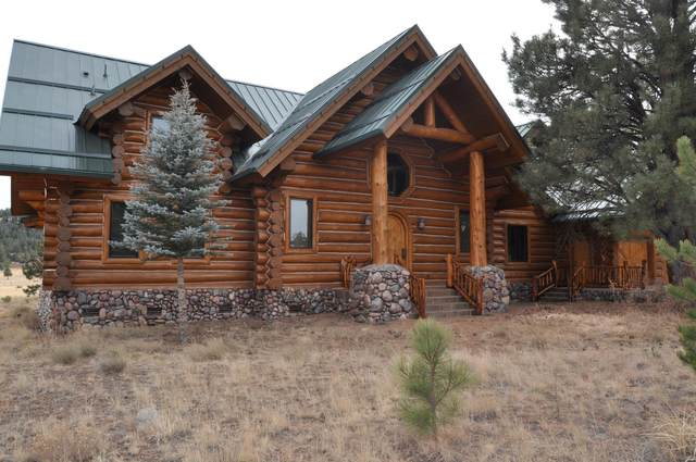32 N Crn 1332 Road, Greer, AZ 85927 (MLS #6044099) :: Long Realty West Valley