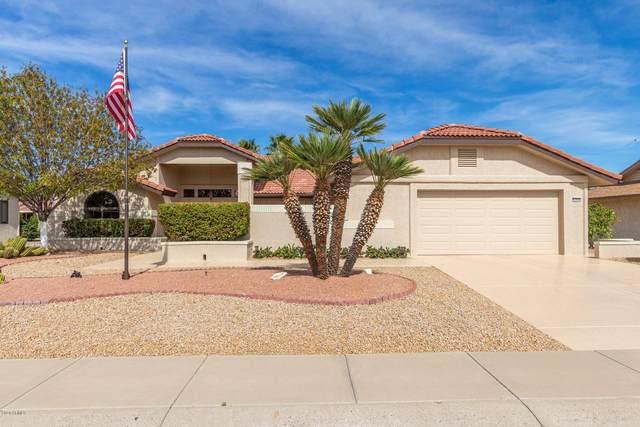 13634 W Gardenview Drive, Sun City West, AZ 85375 (MLS #6044223) :: Howe Realty