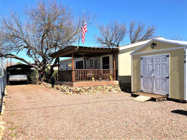 174 E Javelina Place, Tonto Basin, AZ 85553 (MLS #6044264) :: The Copa Team | The Maricopa Real Estate Company