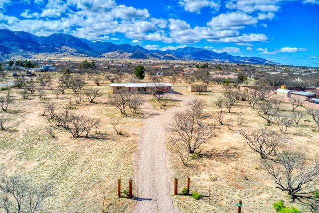 6518 S Jaxel Road, Hereford, AZ 85615 (MLS #6044428) :: Howe Realty