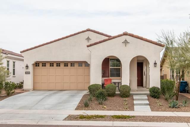 20698 W Meadowbrook Avenue, Buckeye, AZ 85396 (MLS #6044468) :: Long Realty West Valley