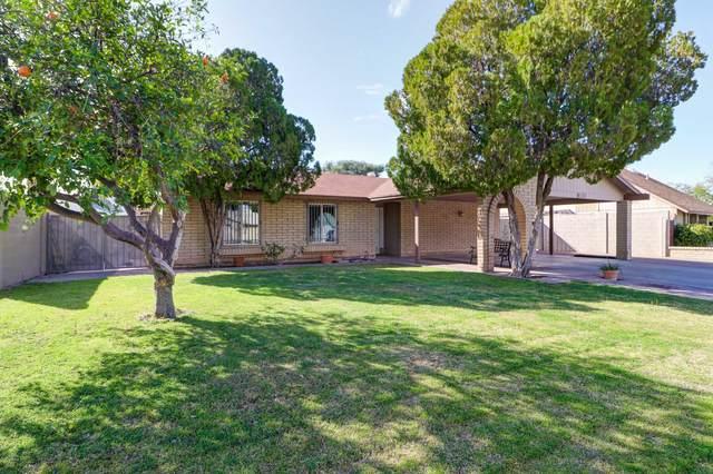 6331 W Sunnyslope Lane, Glendale, AZ 85302 (MLS #6044861) :: Brett Tanner Home Selling Team