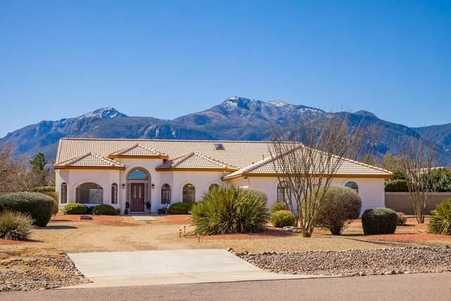 3050 E Atsina Drive, Sierra Vista, AZ 85650 (MLS #6044962) :: Brett Tanner Home Selling Team