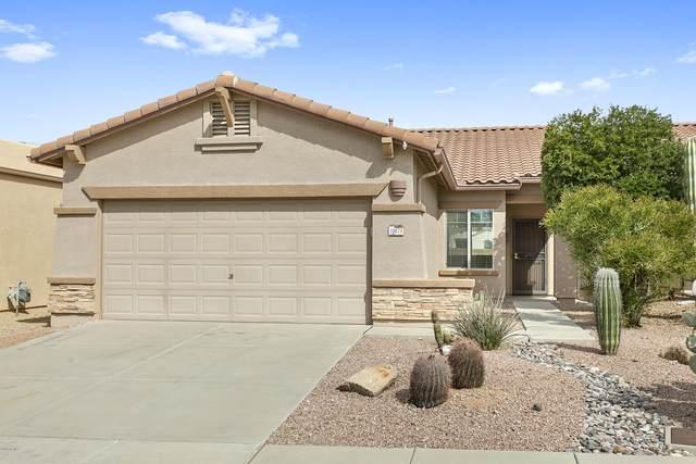 10874 E Secret Canyon Road, Gold Canyon, AZ 85118 (MLS #6045247) :: The Kenny Klaus Team