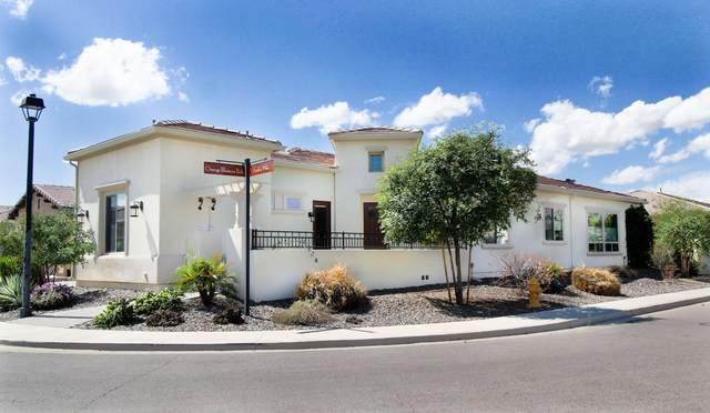 35840 N Anthos Way, Queen Creek, AZ 85140 (MLS #6045293) :: Arizona Home Group