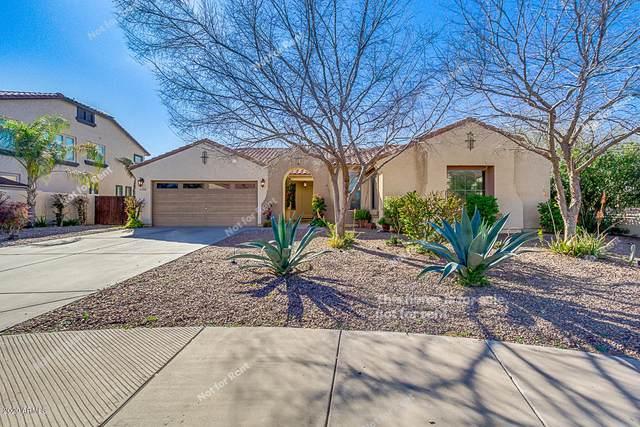 21060 S 184TH Place, Queen Creek, AZ 85142 (MLS #6045410) :: Revelation Real Estate
