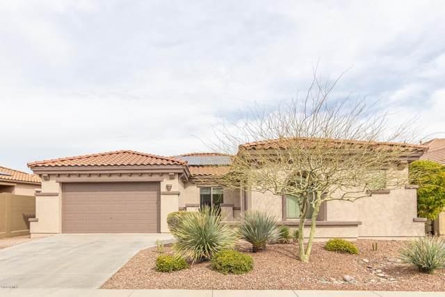 3338 W Links Drive, Phoenix, AZ 85086 (MLS #6045476) :: Revelation Real Estate