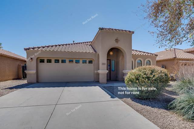 3935 E Graphite Road, San Tan Valley, AZ 85143 (MLS #6045499) :: The Everest Team at eXp Realty