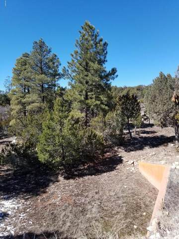 4971 Sunset Ridge Loop, Happy Jack, AZ 86024 (MLS #6045515) :: Kepple Real Estate Group