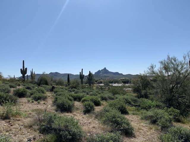 16710 E Trevino Drive, Fountain Hills, AZ 85268 (MLS #6045630) :: The Helping Hands Team