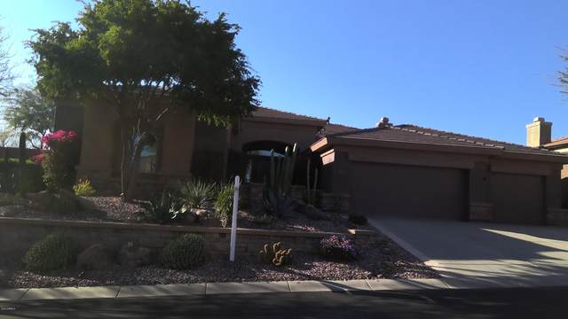 42114 N Long Cove Way, Anthem, AZ 85086 (MLS #6045785) :: The Daniel Montez Real Estate Group