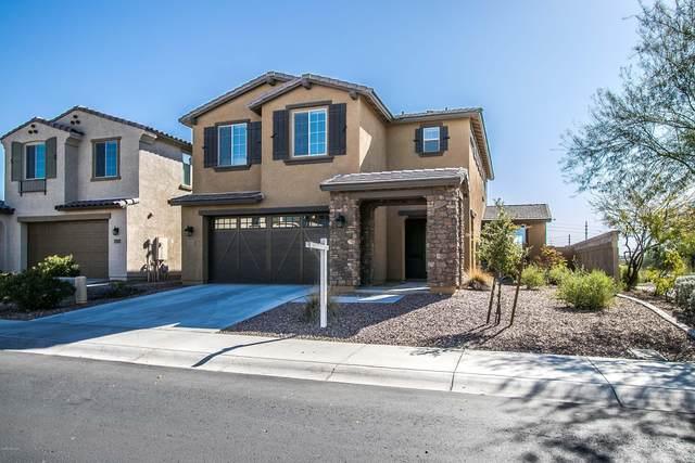 13201 N 91ST Drive, Peoria, AZ 85381 (MLS #6045798) :: My Home Group