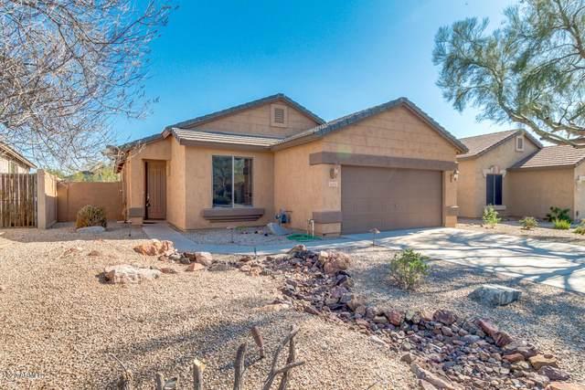 6571 E Casa De Leon Lane, Gold Canyon, AZ 85118 (MLS #6045936) :: Brett Tanner Home Selling Team